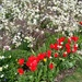 A flower border at Edwards Garden, Toronto