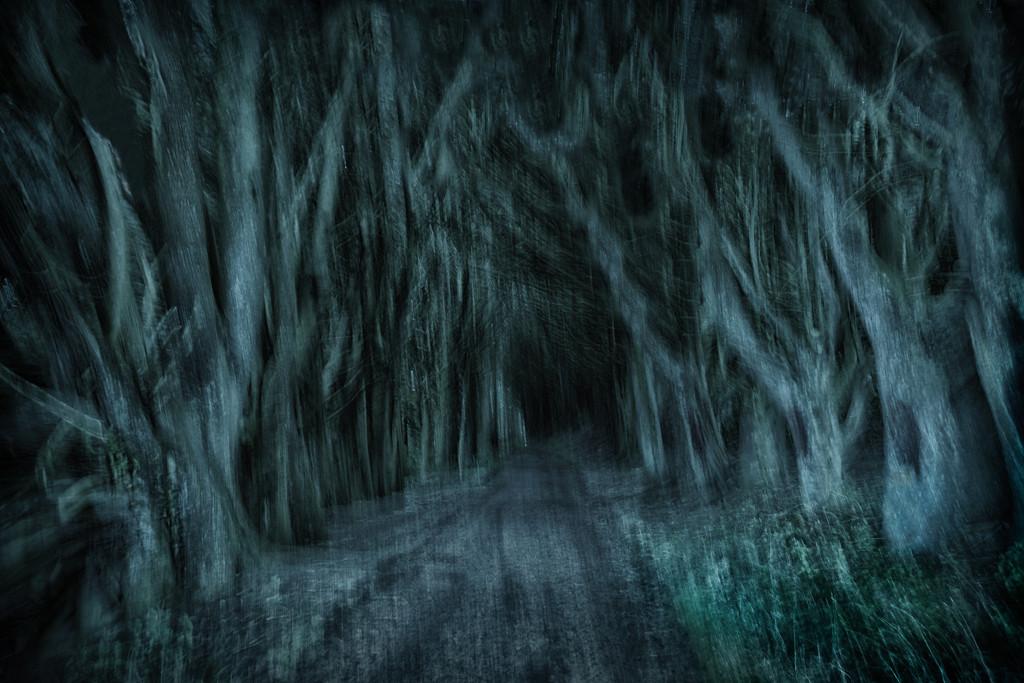 Spooky Street by helenw2