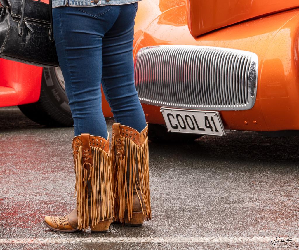 Cool 41 by yorkshirekiwi