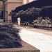 Lone-walker Guirney-Plaza