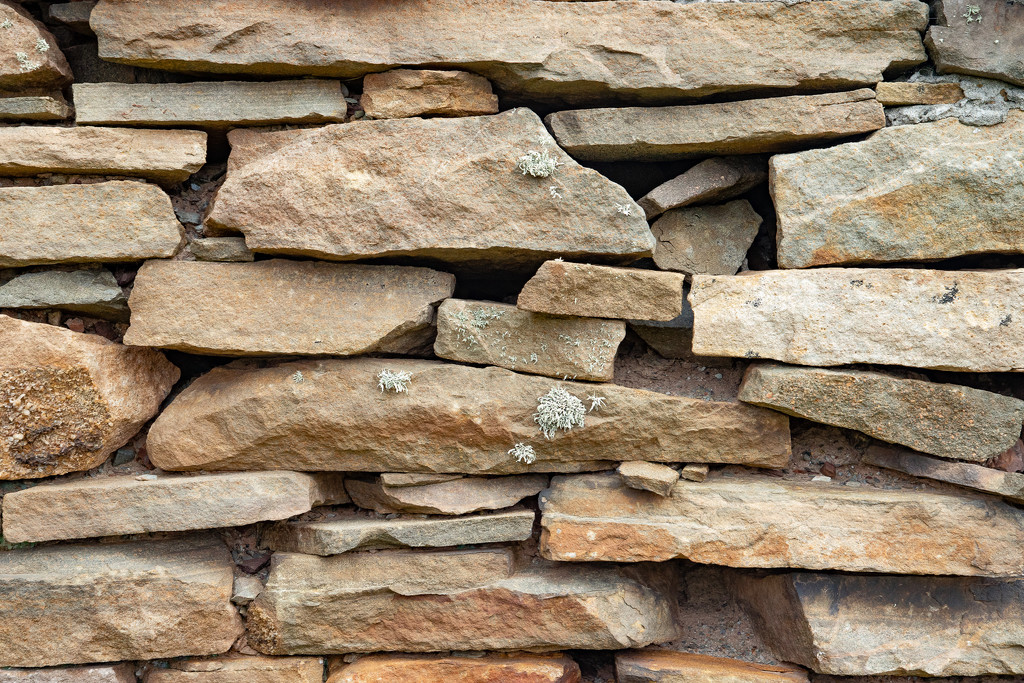 Stone Wall by lifeat60degrees