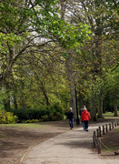13th May 2021 - The Duck Park is turning Green