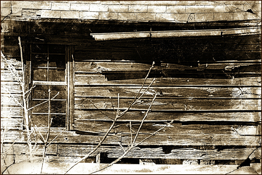 Broken and Weathered by olivetreeann
