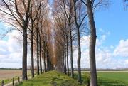 14th May 2021 - A ``Slapersdijk``
