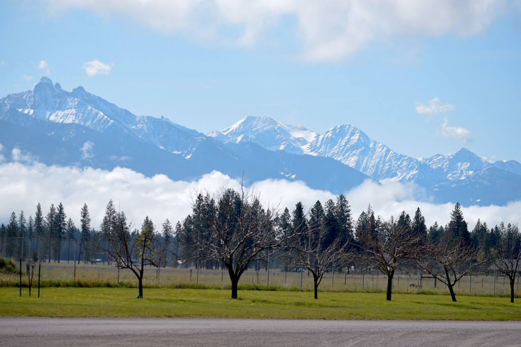 View Just North of Pablo, Montana by bjywamer