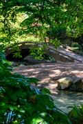 16th May 2021 - Foot bridge at Japanese Garden