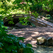 Foot bridge at Japanese Garden