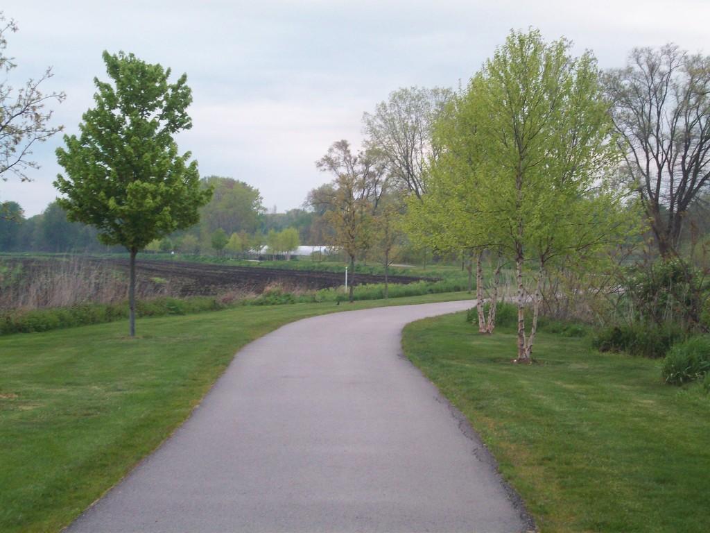 Sunday morning walk by stillmoments33