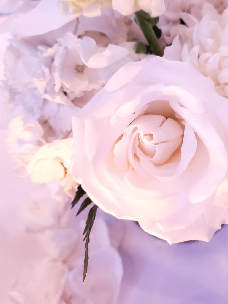 Wedding flowers by jb030958