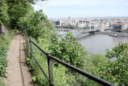 15th May 2021 - Walk on the side of Gellért Hill ......