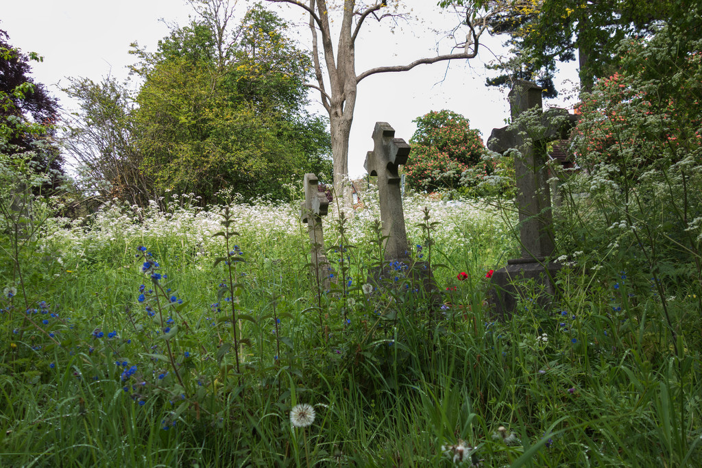 The churchyard at St Mary's, Merton by rumpelstiltskin