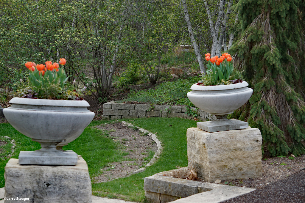 Entrance to the Zen garden by larrysphotos
