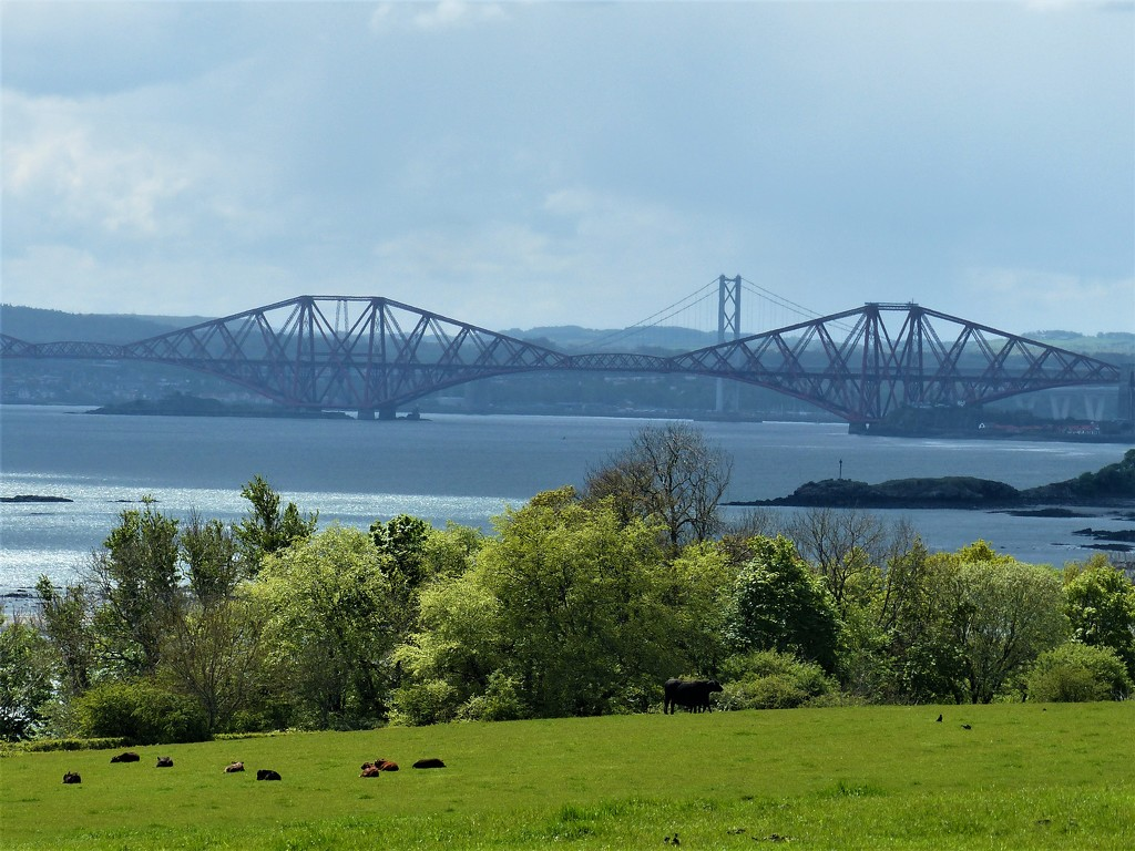 a little walk along The Forth by dorrie2013
