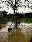 11th May 2021 - Another Rainy Day in suburbia