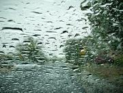 21st May 2021 - Rainfall