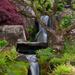 Waterfall  by 30pics4jackiesdiamond