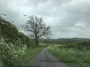 21st May 2021 - Rainy Day in the Cotswolds