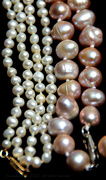 23rd May 2021 - pearls are a woman's real friend