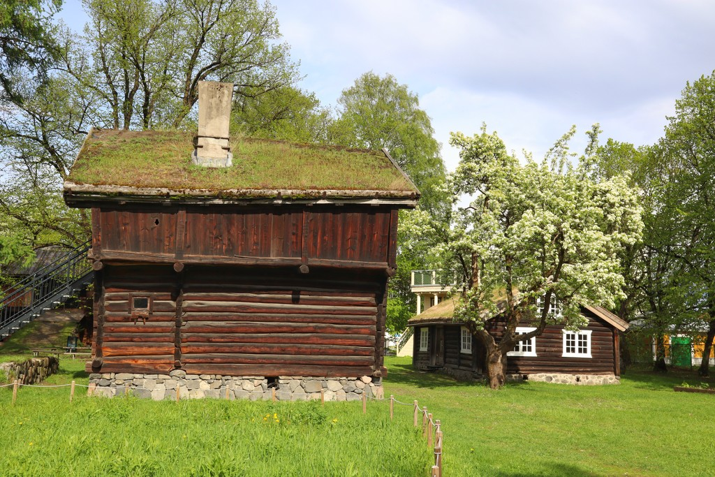 Old buildings at Drammen museum  by okvalle