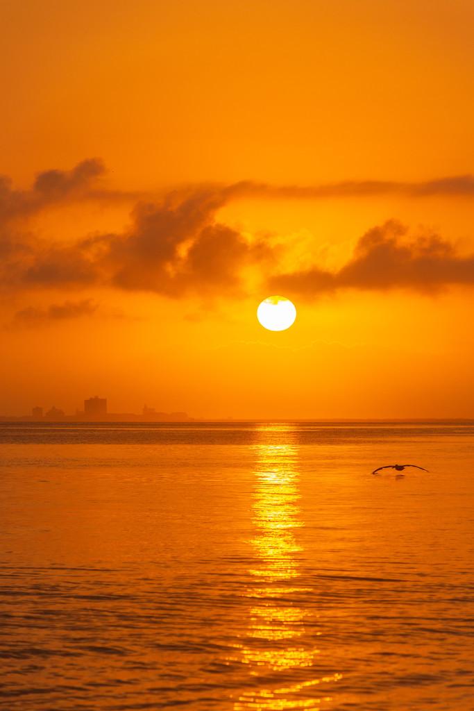 Morning Sunrise by photograndma