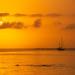 Sailboat in the Sunrise