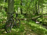 25th May 2021 - Biking
