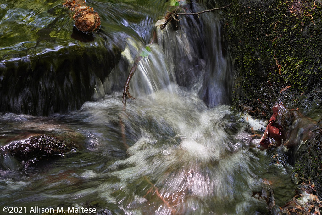 Woodland Waterfall by falcon11