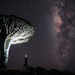 Starry night by stefanotrezzi
