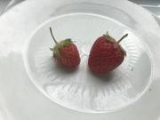 24th May 2021 - Strawberry Season