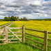 Fenced in!  by rjb71