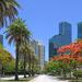 Miami Avenue by danette