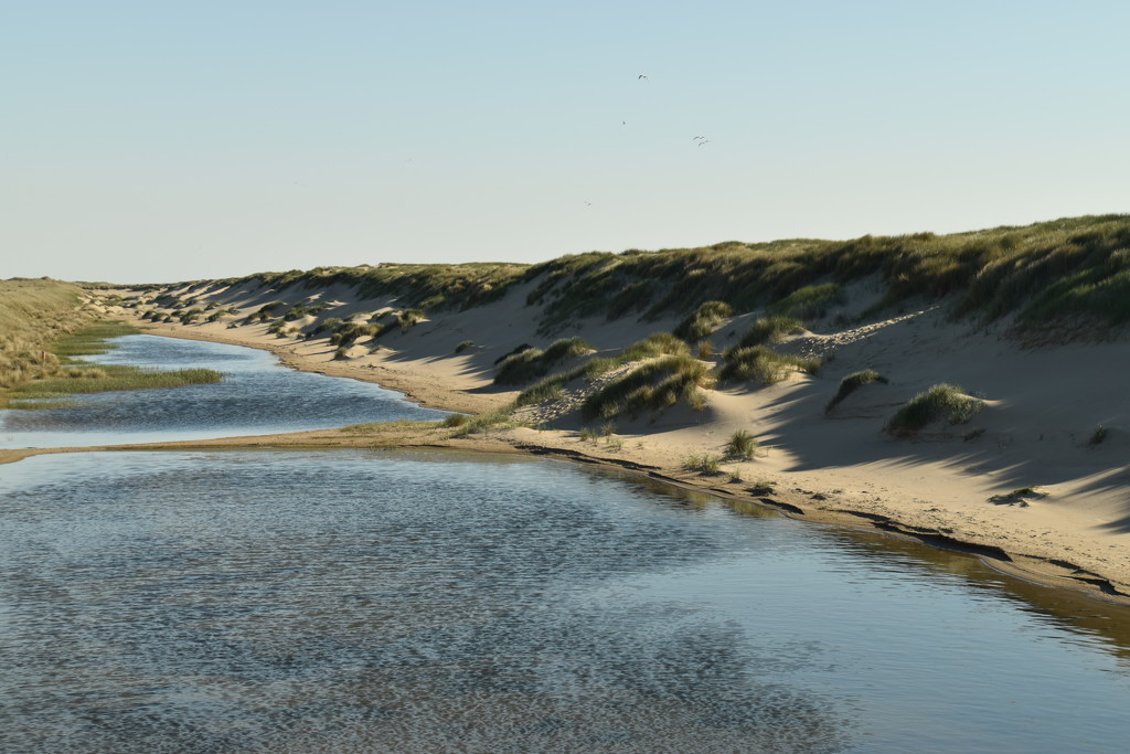 dune valley by beefy2