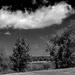 June Words - Clouds