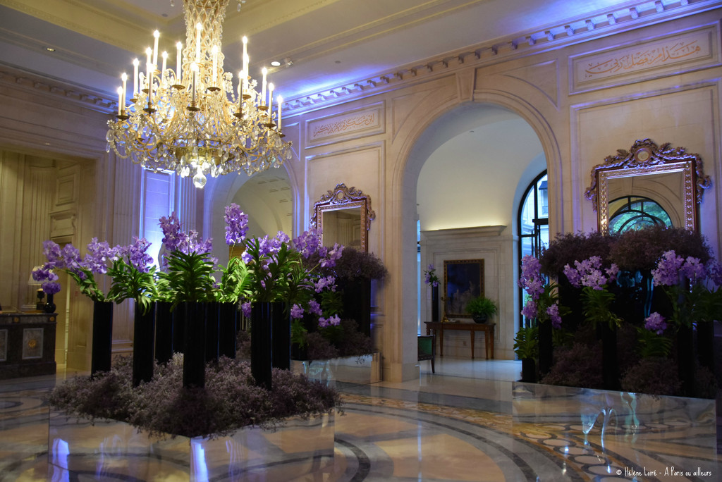 Hotel George V  by parisouailleurs