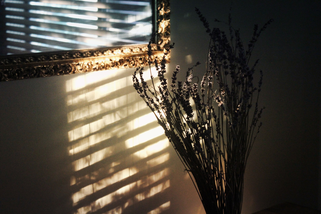 Morning Light by cristie
