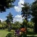 Bluebell Arboretum