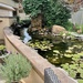 Pond and water wall