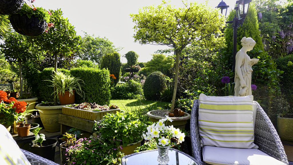 Garden by tonygig