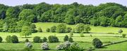 1st Jun 2021 - Belper Countryside