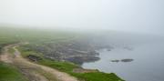 6th Jun 2021 - Into the Mist