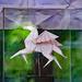 Orginal origami Pegasus