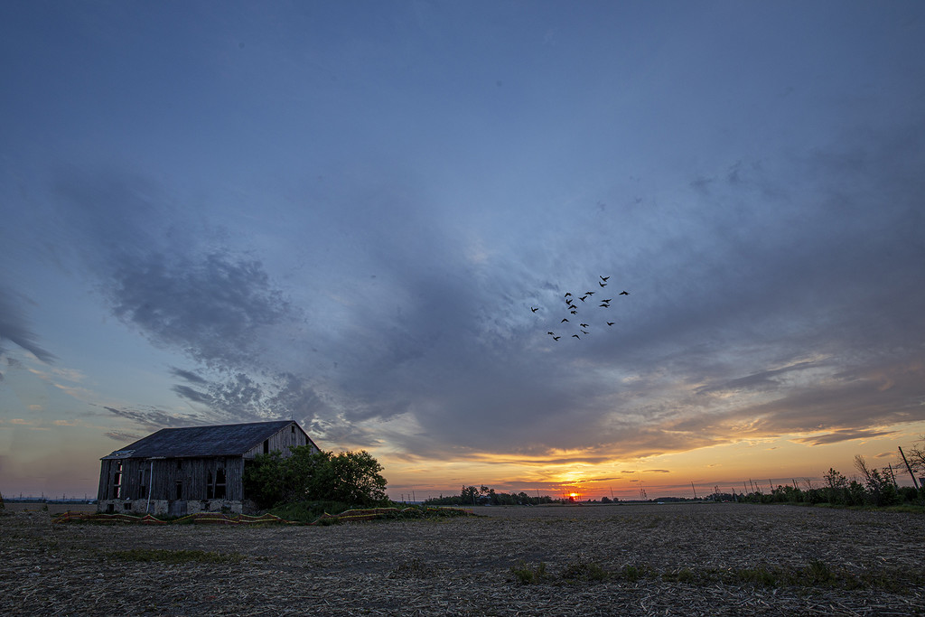 8th line Barn Sunset by pdulis