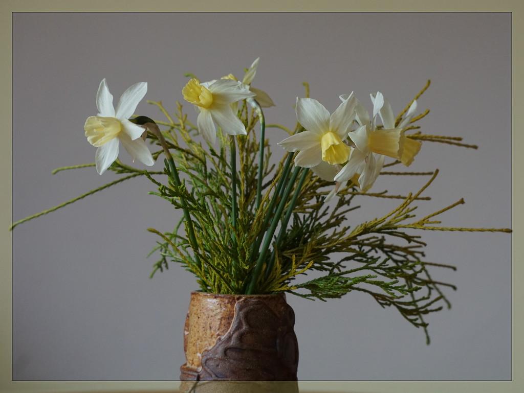 A vase of narcissus........... by quietpurplehaze