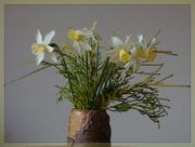 7th Jun 2021 - A vase of narcissus...........
