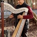 South American buskers doing Elvis in Manly - harp