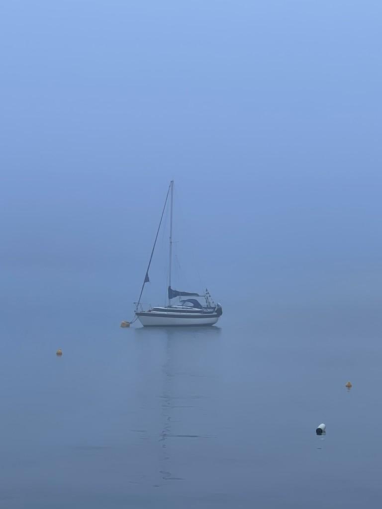 Foggy Morn by bill_gk