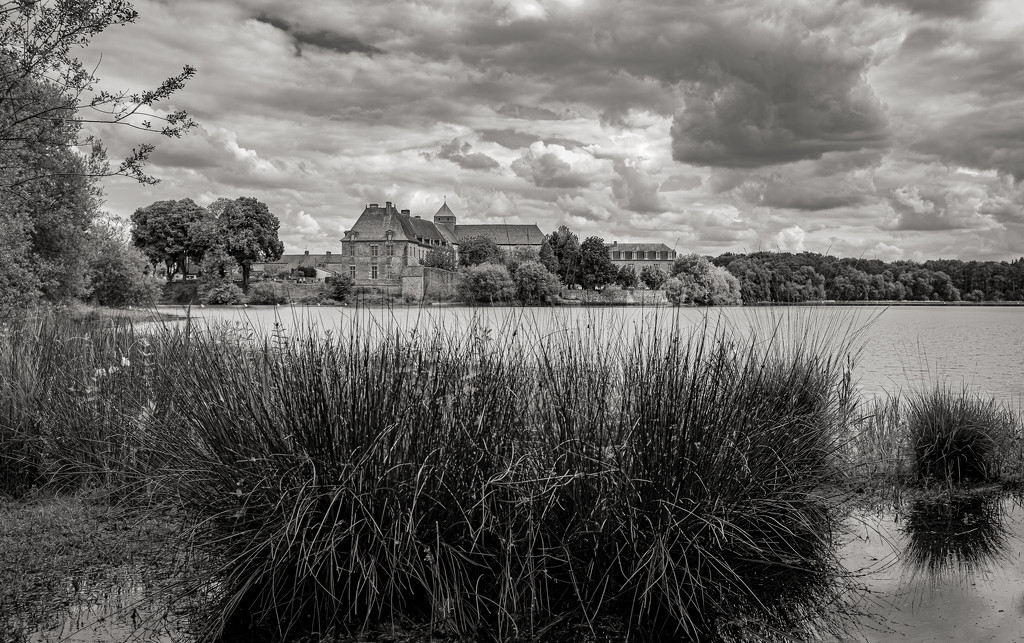 Beyond the Reeds... by vignouse