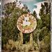 Jones Ranch