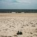 Sun, Sand & Ocean