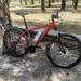 Rare species - a new bike